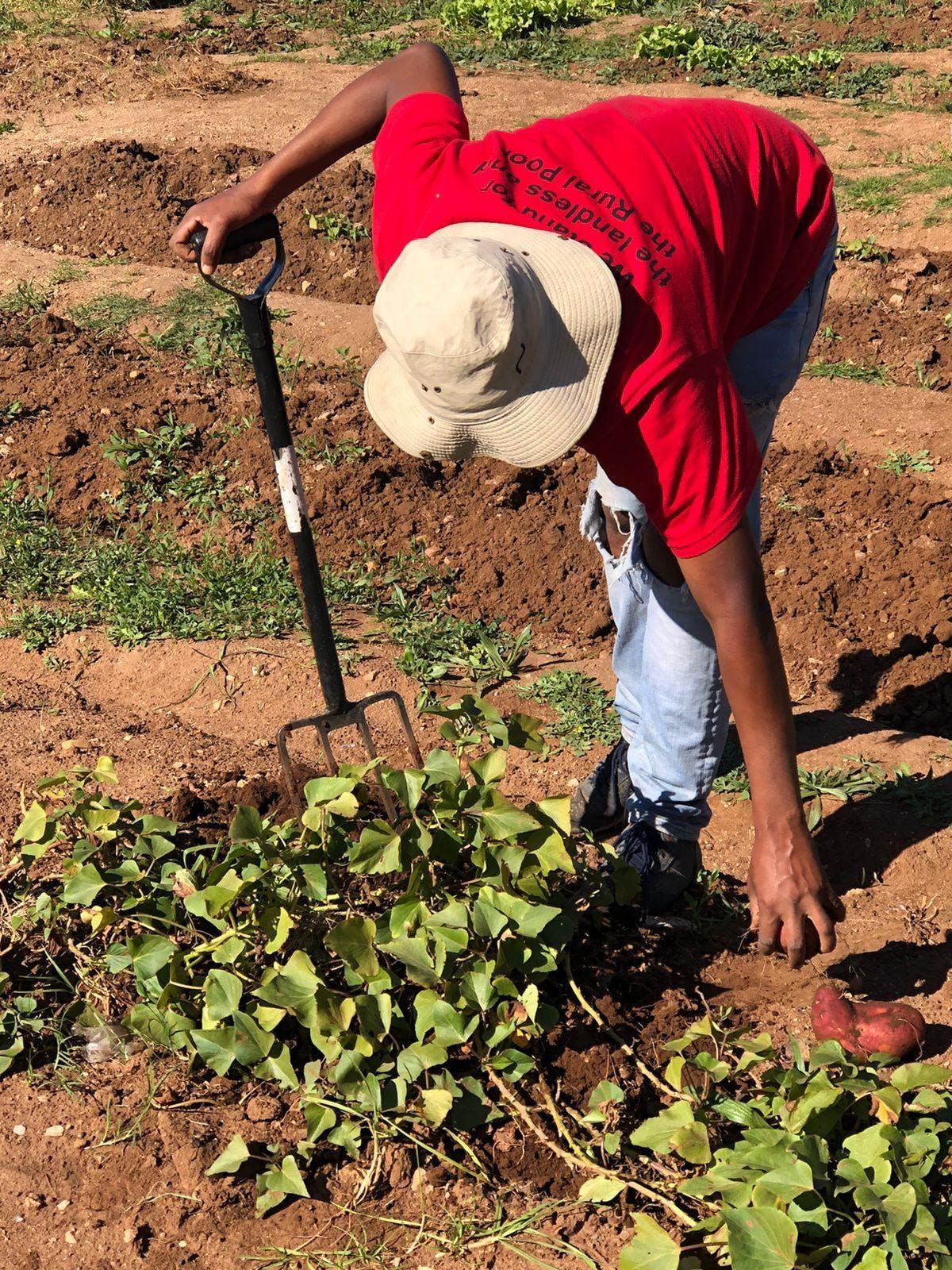 Photo courtesy of CIPSET, Nelson Mandela University